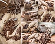 麻袋与咖啡果摄影高清图片