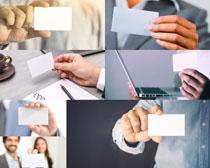 手中的名片展示摄影高清图片