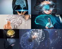 脑部科技商务男人摄影高清图片