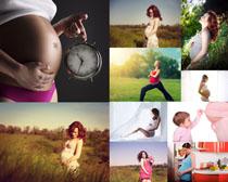 大肚子妇女摄影高清图片