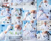 实验科学家摄影高清图片