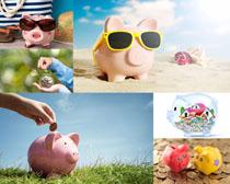 可爱的存钱罐小猪摄影高清图片