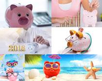 金融存钱小猪摄影高清图片
