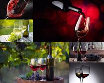 红酒与葡萄摄影高清图片