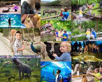 欧美人物与动物园摄影高清图片