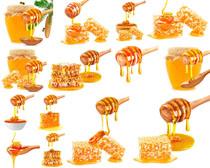 蜂蜜蜜巢摄影高清图片