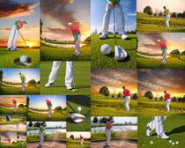 打高尔夫的男人摄影高清图片
