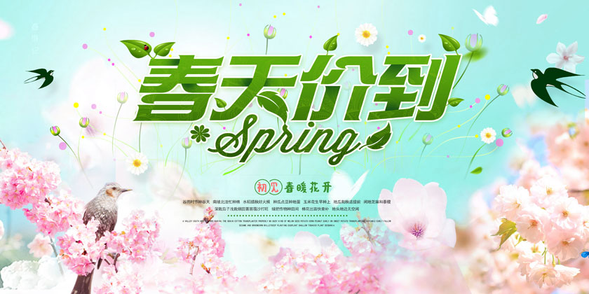 春季商场促销海报模板PSD素材
