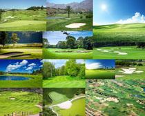 高尔夫场地风景摄影高清图片