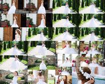 婚纱小女孩摄影高清图片