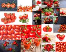 鲜红的西红柿摄影高清图片