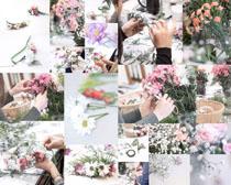 花店漂亮花朵摄影高清图片