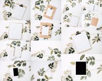 叶子花朵与纸张摄影高清图片