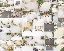 花朵装饰与鸡蛋摄影高清图片