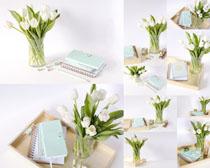 花朵与书本摄影高清图片