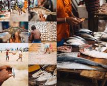 菜场卖鱼人物摄影高清图片