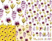 小花朵背景摄影高清图片