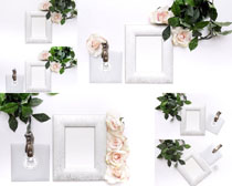 花朵与相框摄影高清图片