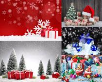 圣誕節日場景攝影高清圖片