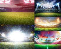 足球场草地摄影高清图片