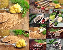 食材调料展示摄影高清图片