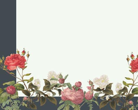 工笔画花朵封面PSD素材