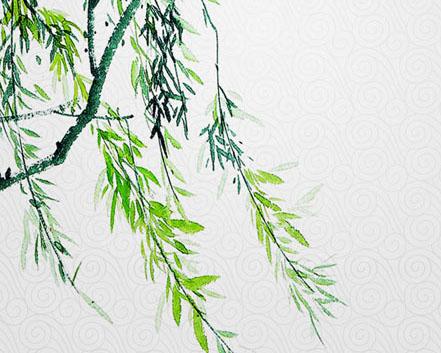 柳树与荷花PSD素材