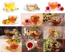 菊花与茶摄影高清图片