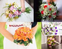 爱情美丽花朵摄影高清图片