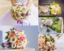 新鲜一束花朵摄影高清图片