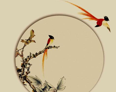 古典小鸟艺术画PSD素材