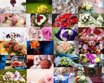 漂亮的色彩玫瑰花摄影高清图片