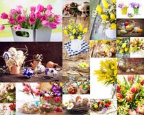 美丽花朵与装饰蛋摄影高清图片