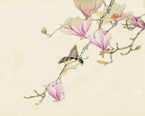 花朵枝头鸟绘画时时彩投注平台