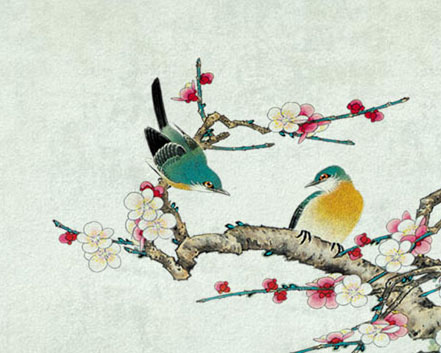 梅花枝头鸟摄影高清图片