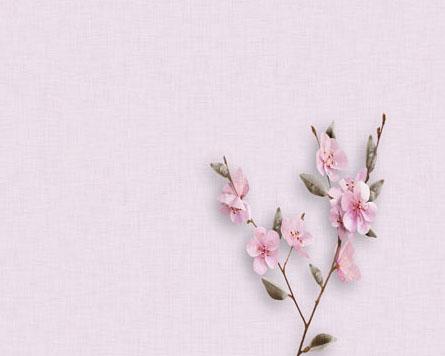 花朵与背景PSD素材