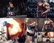 健身房男女健身摄影高清图片