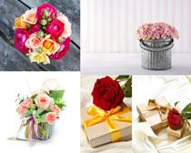 礼物与玫瑰花朵摄影高清图片