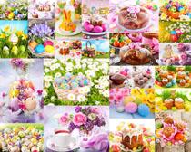 花朵藝術彩蛋攝影高清圖片