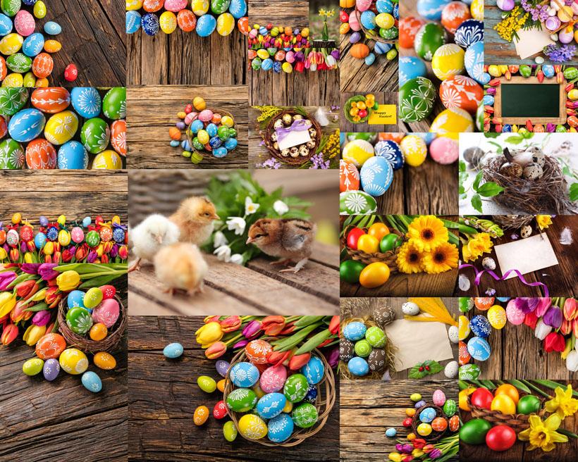 彩蛋藝術裝飾攝影高清圖片