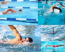 比赛游泳人物摄影高清图片
