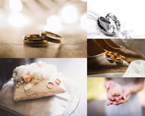 情侣戒指摄影高清图片