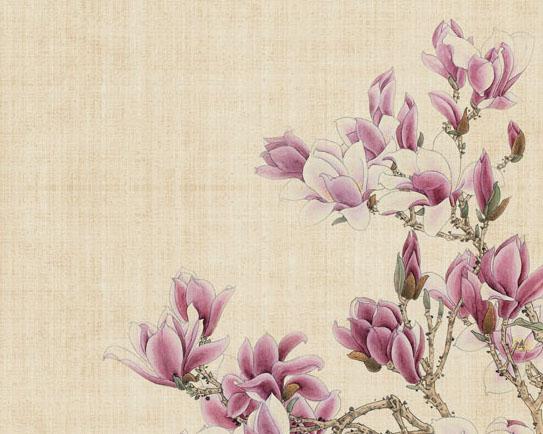 优美的中国花朵绘画PSD素材