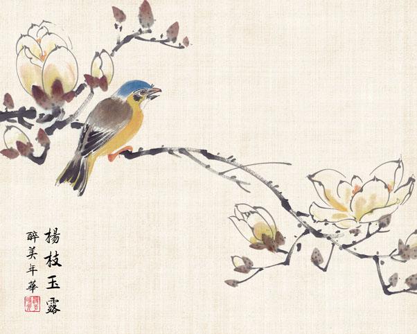 绘画鸟花朵PSD素材