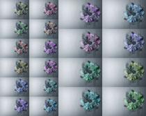 背景色彩花摄影高清图片
