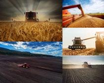 割稻草机器摄影高清图片