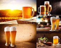 阳光下的啤酒摄影高清图片