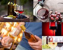 红葡萄酒展示拍摄高清图片