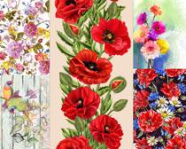 手绘花朵背景摄影高清图片