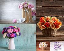 漂亮的花盆鲜花摄影高清图片